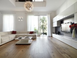 Modern living room with wood floor overlooking the garden